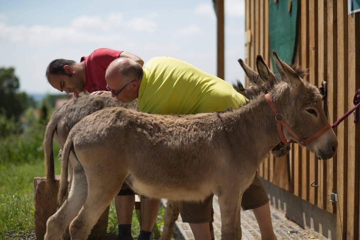 Gemeinsame Tierpflege