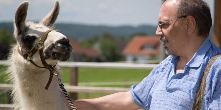 Sind Tiere die besseren Therapeuten?