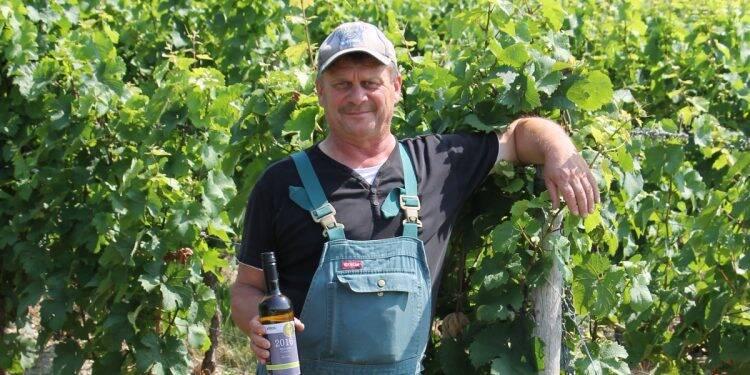 Vom Weinbau im Rheingau