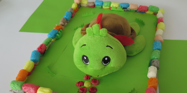 Bauvorhaben Schildkrötengehege